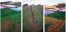 <b>Damián Ortega, <i>Brasilia (Access Gardens to the Oscar Niemeyer Buildings in Brasilia</i>, 2003</b>